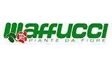 maffucci